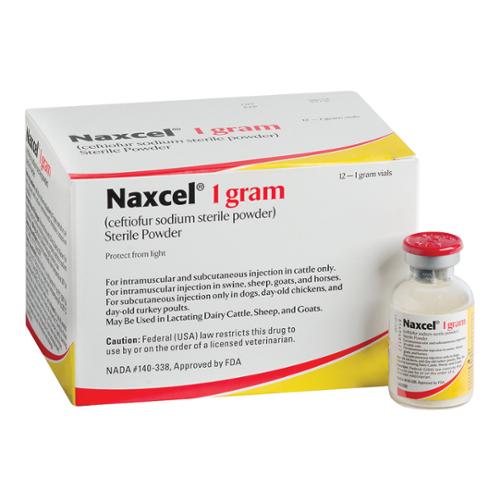 NAXCEL®