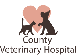 County Veterinary Hospital