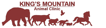King's Mountain Animal Clinic