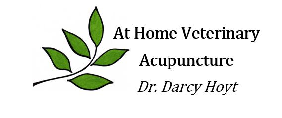 At Home Veterinary Acupuncture
