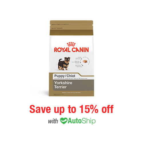 Royal Canin Breed Health Nutrition Yorkshire Terrier Puppy Dry