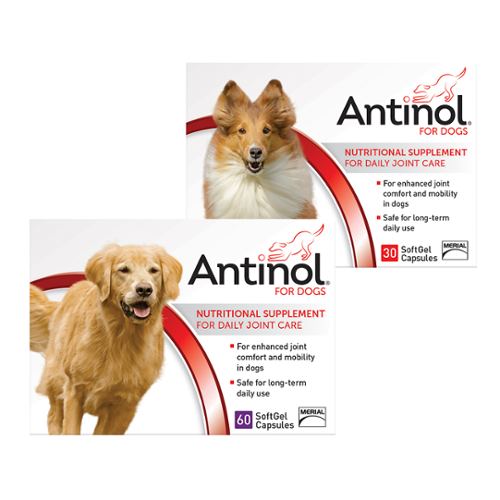 Antinol® SoftGel Capsules for Dogs