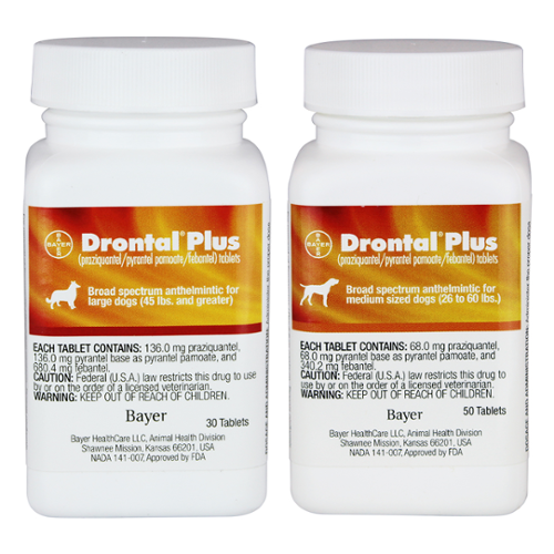 Drontal® Plus Tablet Dog