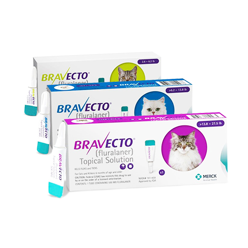 Bravecto® for Cats