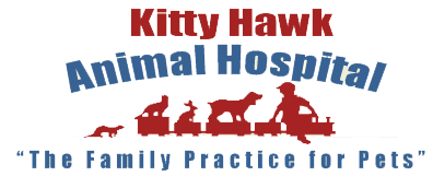 Kitty Hawk Animal Hospital
