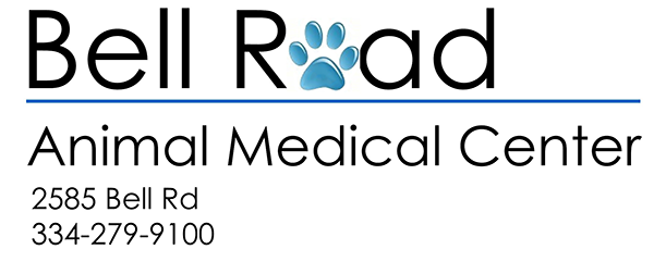 Bell Road Animal Medical Center