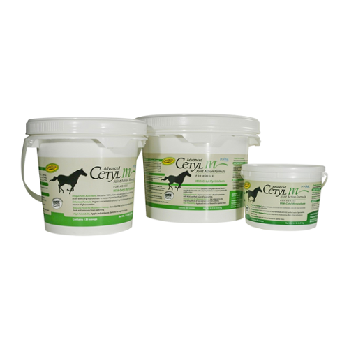 Advanced Cetyl M Joint Action Powder for Horses