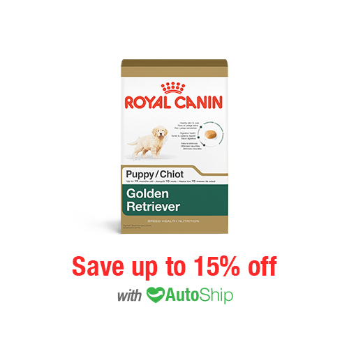 Royal Canin Breed Health Nutrition Golden Retriever Puppy Dry