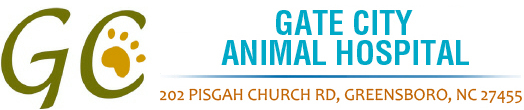 Gate City Animal Hospital