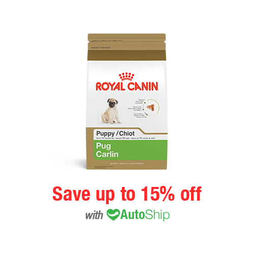 Royal Canin Breed Health Nutrition Pug Puppy Dry