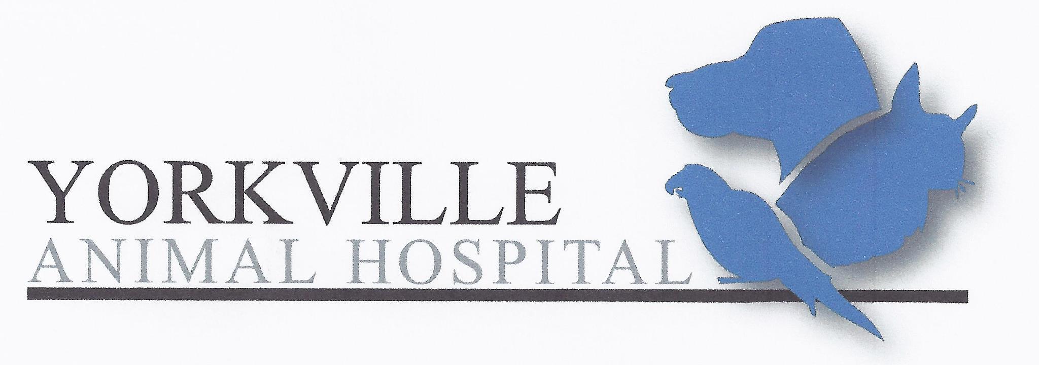 Yorkville Animal Hospital