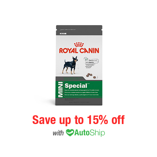 Royal Canin Size Health Nutrition MINI Special Dry