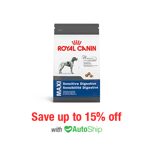 Royal Canin Size Health Nutrition MAXI Sensitive Digestion Dry