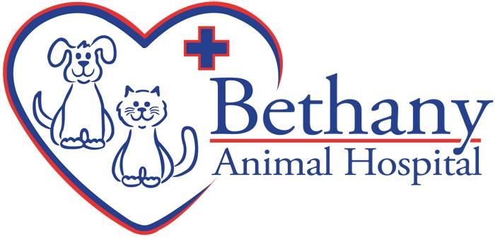 Bethany Animal Hospital LLC