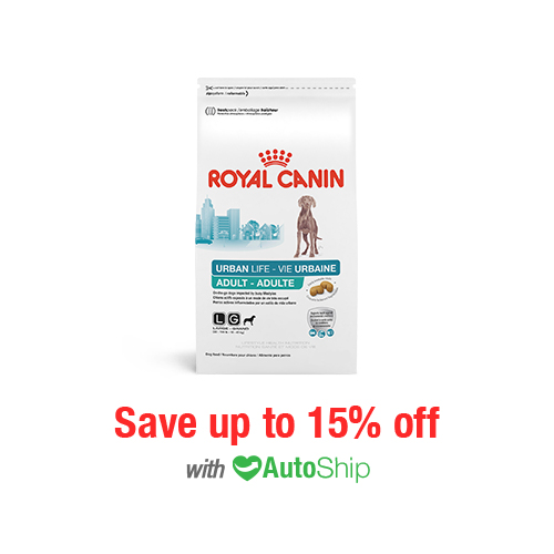 Royal Canin Lifestyle Health Nutrition Urban Life Large Breed Adult Dry