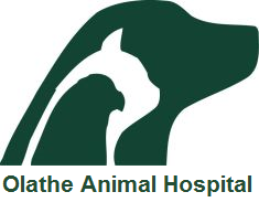 Olathe Animal Hospital