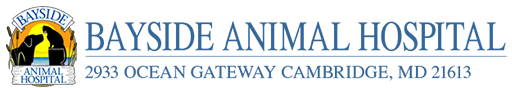 Bayside Animal Hospital