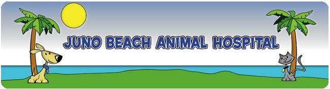Juno Beach Animal Hospital