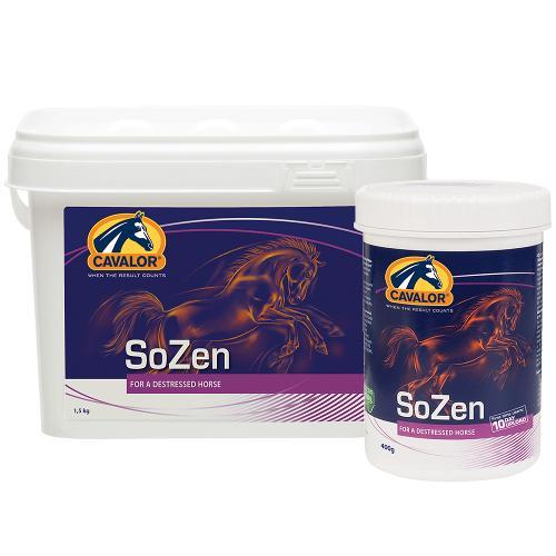 SoZen