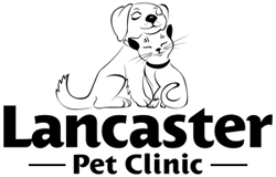 Lancaster Pet Clinic