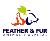 Feather & Fur Animal Clinic
