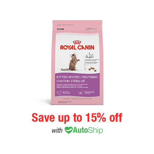 Royal Canin Feline Health Nutrition Spayed/Neutered Kitten Dry