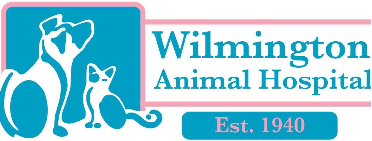 Wilmington Animal Hospital