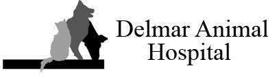 Delmar Animal Hospital