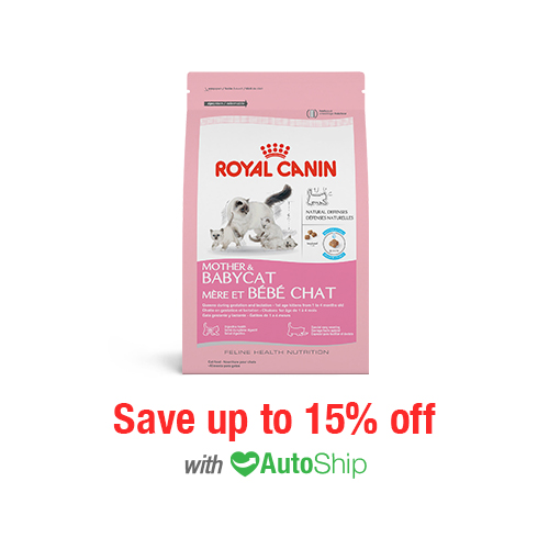 Royal Canin Feline Health Nutrition Mother & Babycat Dry