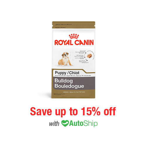Royal Canin Breed Health Nutrition Bulldog Puppy Dry
